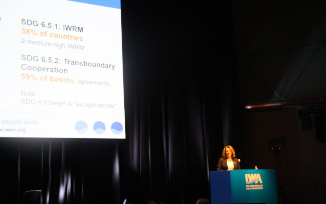 IWA Conference